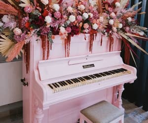 flower, pink, and music image