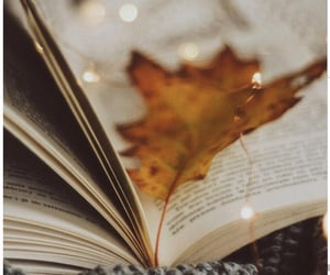 aesthetic, atmosphere, and autumn image