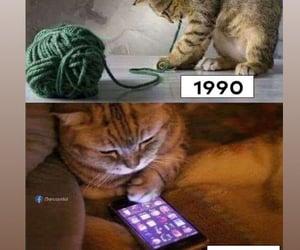 celular, funny, and memes image