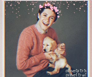 wallpaper, niall horan, and iphone homescreen image