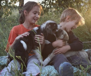 bff, children, and border collie image