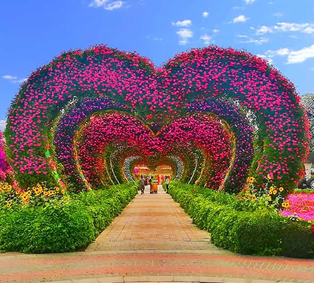 Dubai Miracle Garden On We Heart It