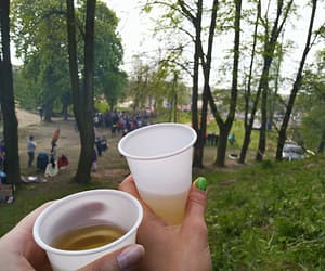 beer, chill, and forest image