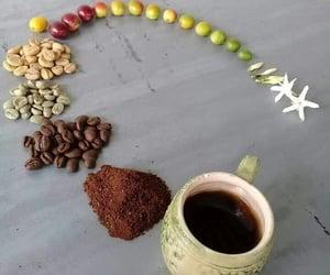 cofee and circule image