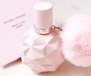pink, perfume, and inspiration image