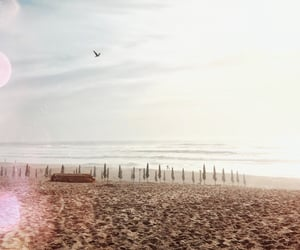 adventure, sand, and beach image