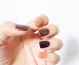 autumn, beige, and black image