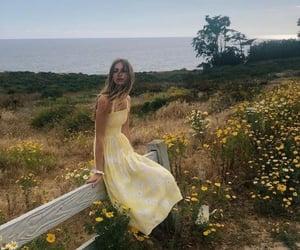 beauty, field, and sea image