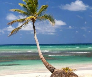 beaches, escape, and tropics image