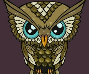 owl, wallpapers, and خلفياتً image