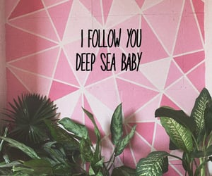 follow, wallpaper, and pink image