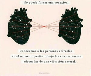 amor, frases, and conexion image