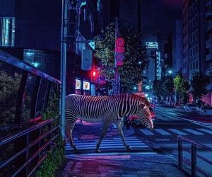 animal, karen, and wallpaper image