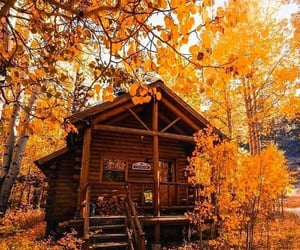 cozy, cabin, and leaves image