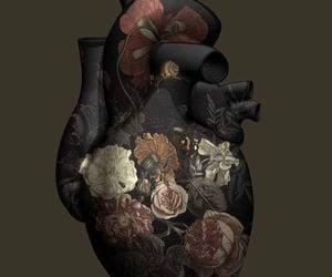 amor, bonito, and prosa poética image