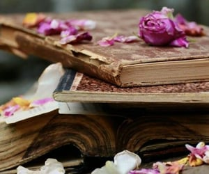 book, lifestyle, and books image