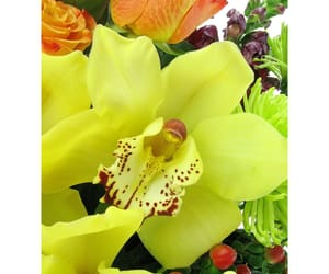 birthday cakes, fresh flowers, and flowers online image