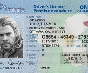 buy drivers license and irish driving licence image