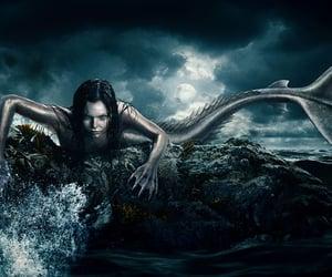 mermaid and siren image