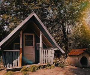 cabin, woods, and lover image