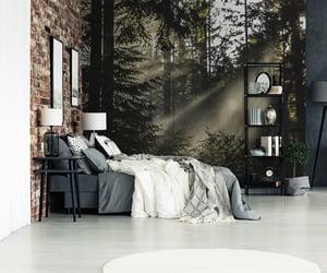 bedroom, design, and fog image