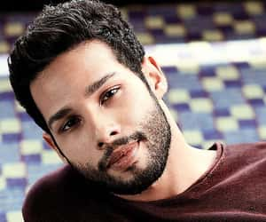 bollywood, entertainment, and siddhant chaturvedi image