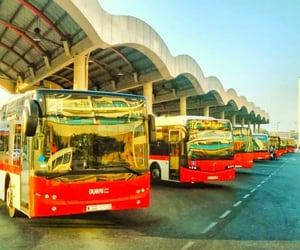 public transport, dubai butterfly garden, and rta bus image