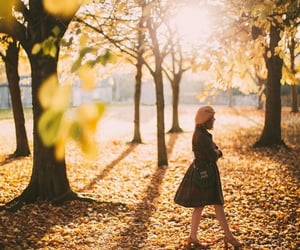 autumn and walking image