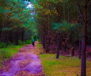 bohemian, hike, and hippie image