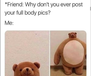bear, post, and friends image