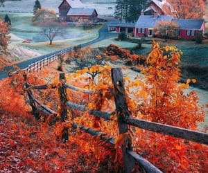 autumn, beauty, and nature image