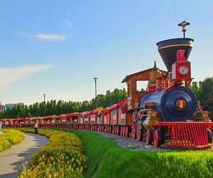 floral train and dubai miracle garden image