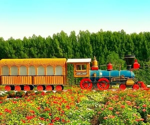 floral train, dubai miracle garden, and flower train image