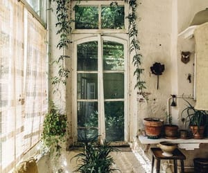bohemian, interior, and oasis image