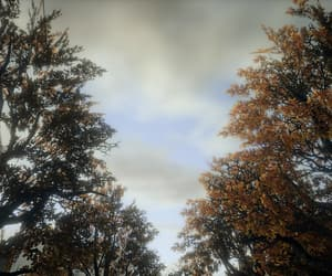 branches, alan wake, and clouds image
