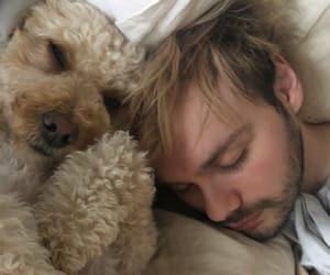 dog, 5sos, and michael clifford image
