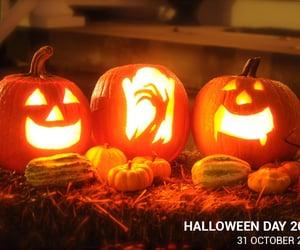 halloween day, belgium visa, and scary halloween costumes image
