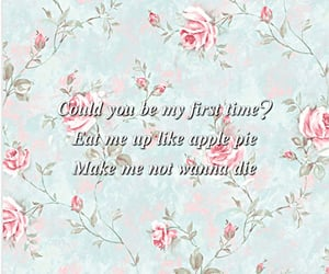 applepie, girl, and quotes image