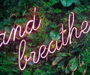 aesthetic, breathe, and pink image
