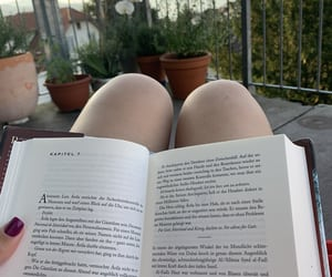 book, bookworm, and random image