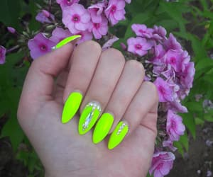 beauty, flowers, and neonnails image