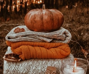 article, fall, and girl image