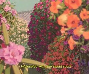 anime, flowers, and spirited away image