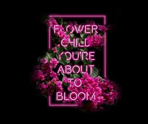 background, flowers, and neon image