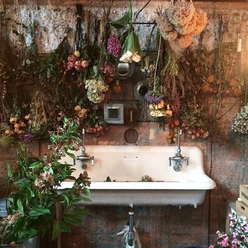 flowers, grunge, and magic image