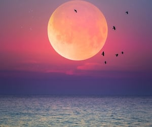 moon, sunset, and sea image