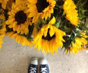 aesthetic, floral, and shoes image