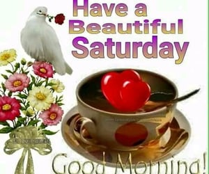 good morning, have a beautiful saturday, and morning image