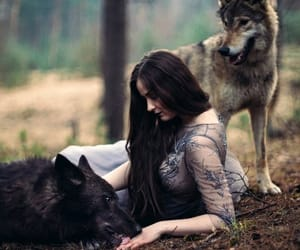 animals, wolf, and love image