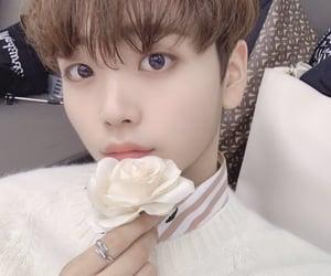 x1, han seungwoo, and kang minhee image